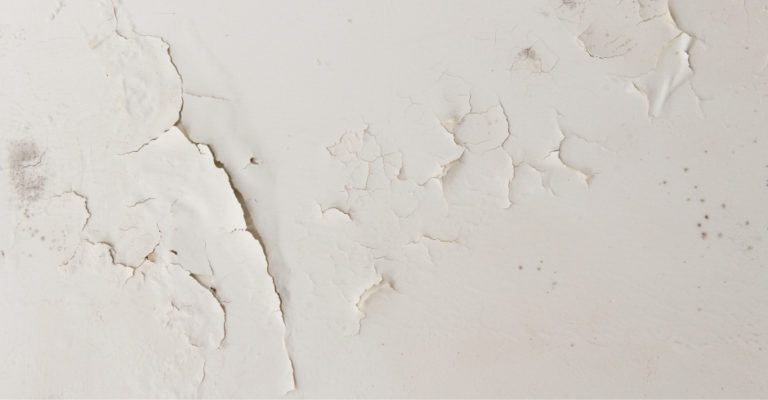 signs-of-risinig-damp-in-a-house-768x400